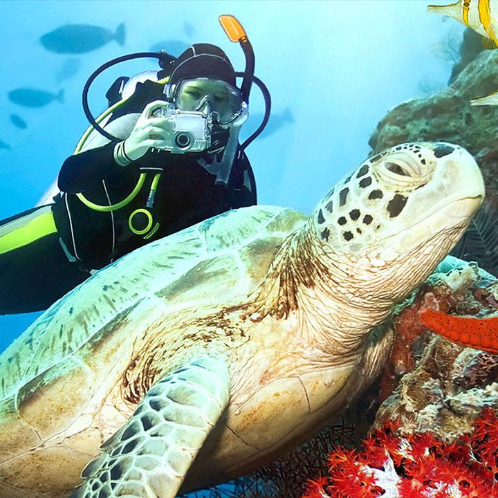 Scuba Diving in Kalithea Bay